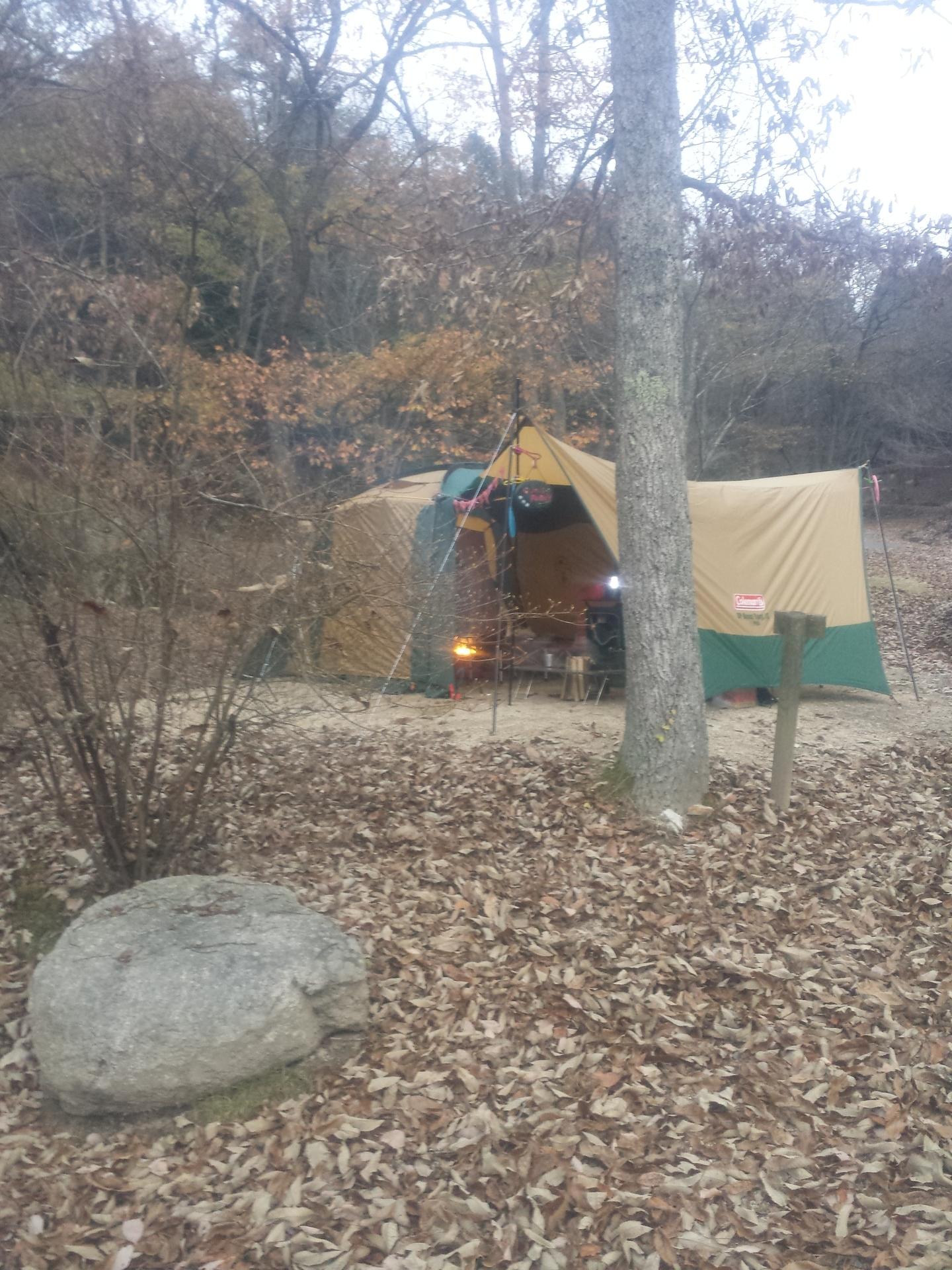 里 四季 の キャンプ 矢野 温泉 場 公園 四季の里